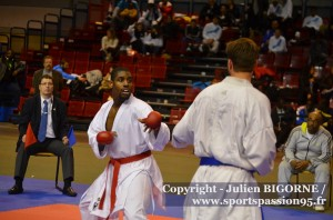 karate-coupe-de-france-seniors-2014-nardy