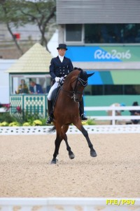 equitation - brieussel 1