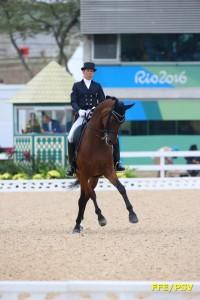 equitation - brieussel 1